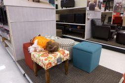 02.24.13 | planking