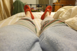 02.11.13   sick day