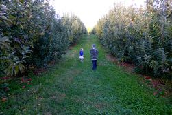 10.25.13   we finally made it to the apple orchard
