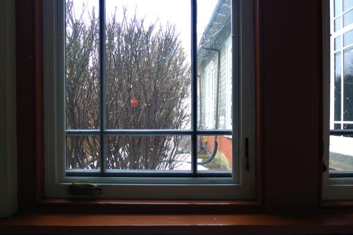 02.03.14 | my window at work