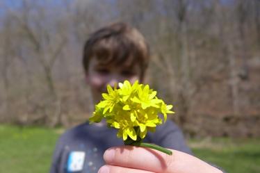 04.12.14   bouquet