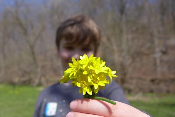 04.12.14 | bouquet