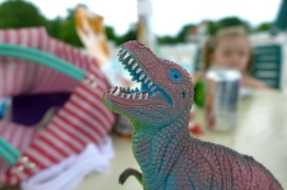 07.07.14 | t-rex at the pool
