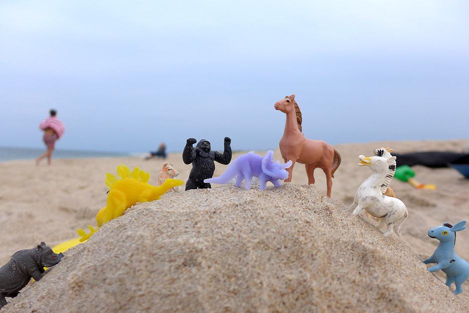 08.21.14 | plastic animals of my youth