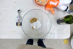 11.14.14 | the last cookie