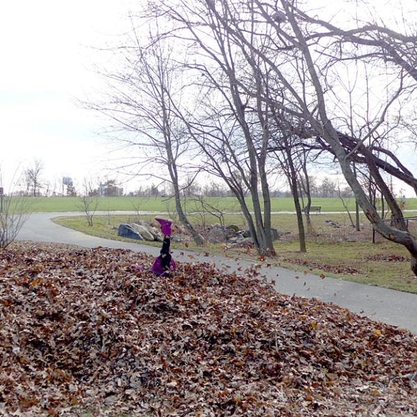 11.22.14 | leaf pile