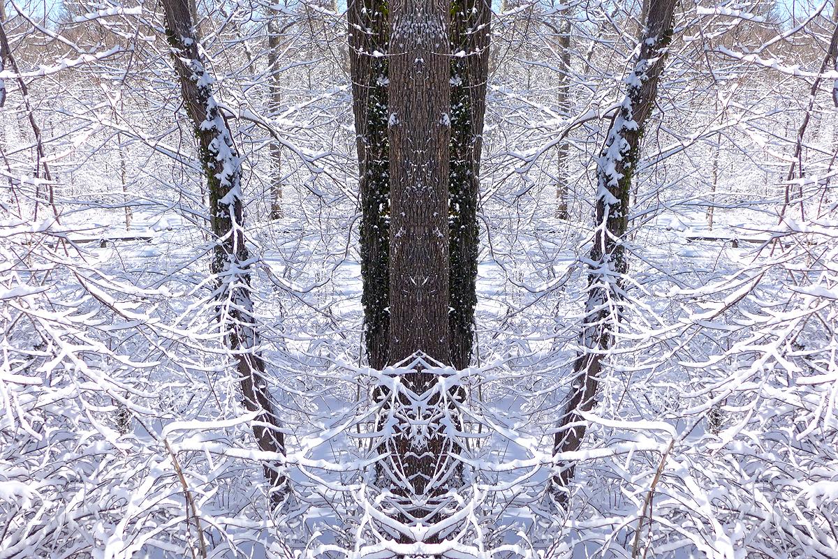 03.09.15   snowllusion