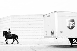 03.16.15   black horse and a ups truck