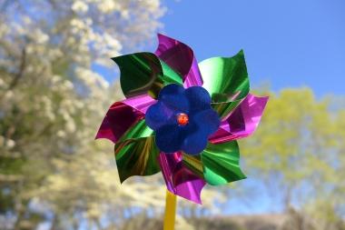 04.27.15   pinwheel