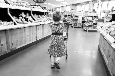05.04.15   little shopper