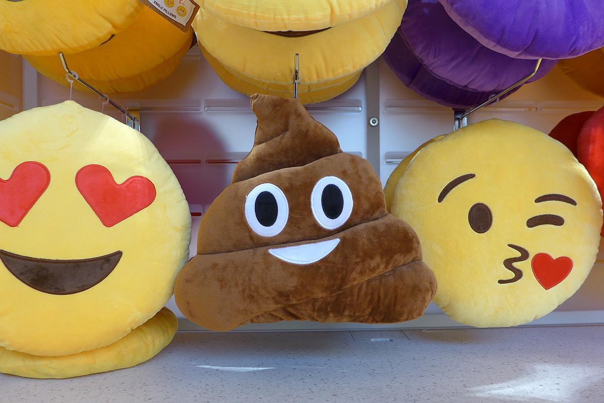 11.13.15 | poop emoji pillow