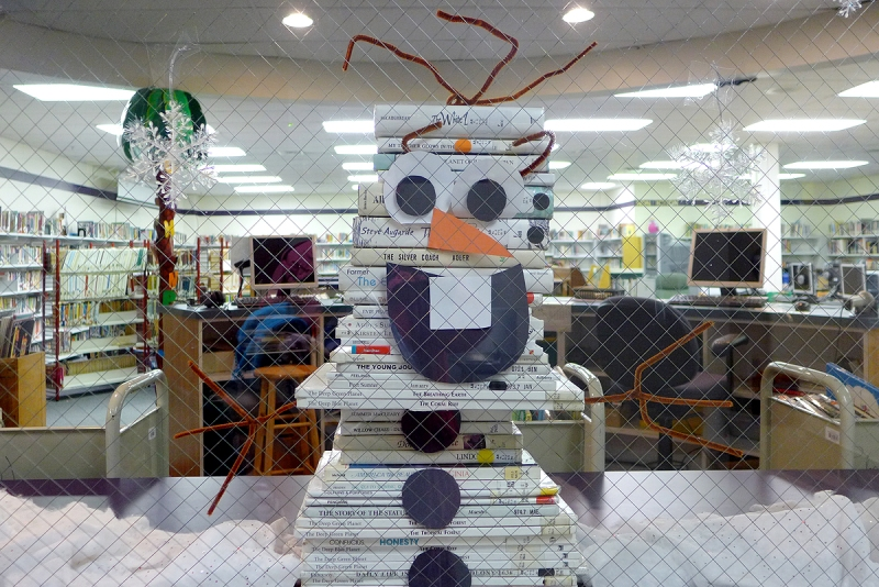 12.28.15 | book stack olaf