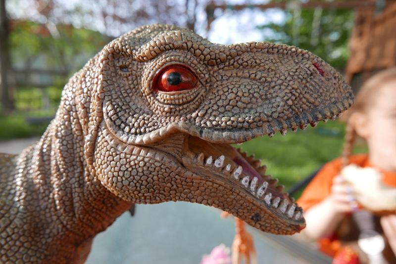 10.07.16 | prehistoric sandwich eater