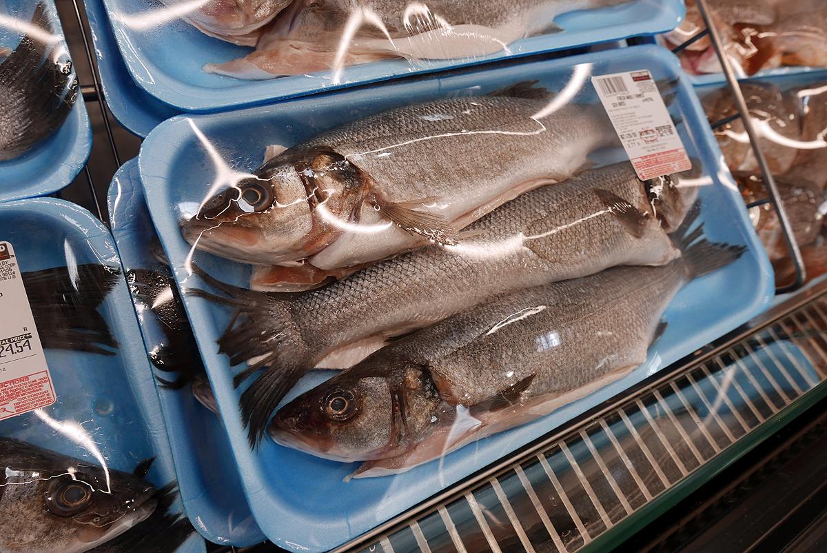 03.04.18 | dead fish
